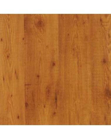 Blaturi pentru exterior WZ Pine HPL blat de masa